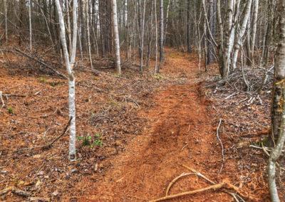 Emberglow Trail Clearing Progess