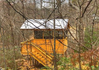 Primitive Treehouse